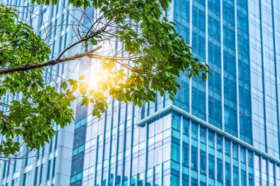 Vad är hållbarhet Vad är hållbart företagande